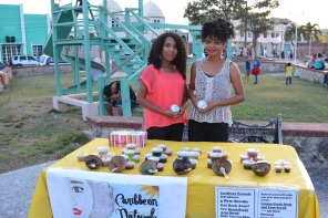 Art in the Park 2016_00095