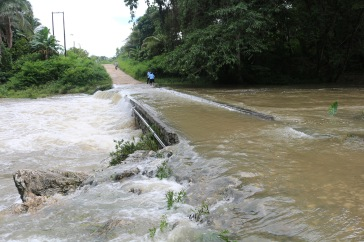 flooded-creek-at-blue-creek-village