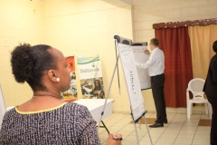 Compete Caribbean Cluster Workshop - Public Sector Session_00003