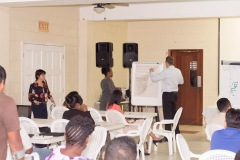 Compete Caribbean Cluster Workshop - Public Sector Session_00016