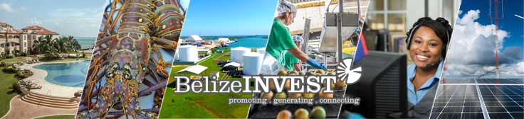 Invest in Belize - Your Natural Niche