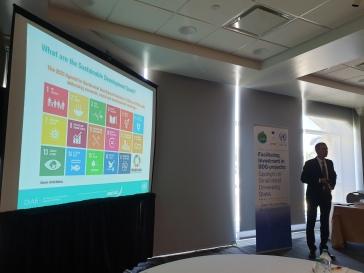 Photo 2 - SDGs